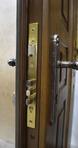 Дверь Мдф шпон с стеклом и ковкой + Мдф шпон DMS07